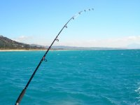 Salidas de pesca en Tarifa
