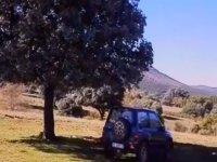 越野车在树荫下