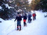 Snowshoe excursion