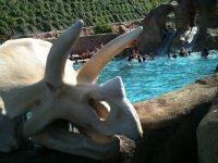 piscina jurasica