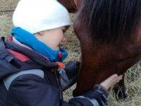 Nino y caballo mimandose