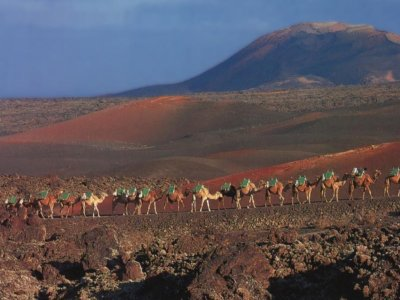 Guided tour in Lanzarote by bus
