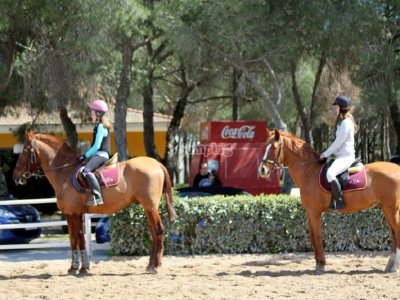 Horse-riding camp + meal, Madrid