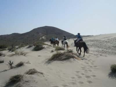 Horseback riding on the coast of Andalusia
