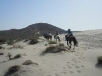骑马在安达卢西亚的海滩