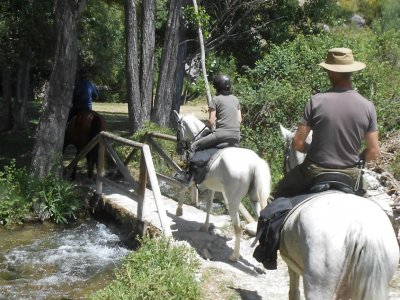 Horse ride in Sierra de Cazorla