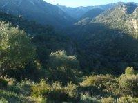 Vistas de la sierra gaditana