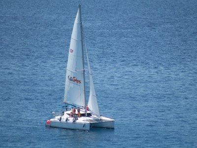 在富埃特文图拉岛的双体船航行