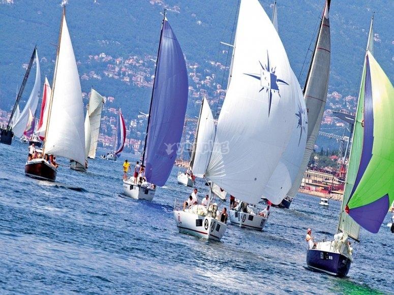 Muchos veleros