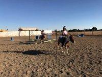Actividades infantiles con ponis