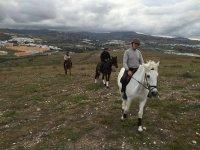 在马背上行走