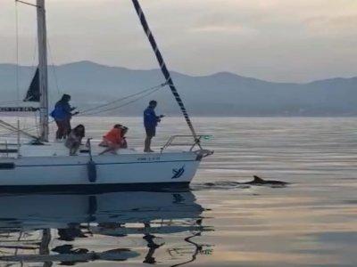 Paseo en velero con patrón en Estepona 4h