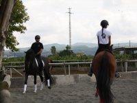 Trabajo de equitacion en pista