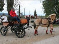 Carro tirado por caballo