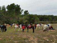 Descanso durante la ruta a caballo