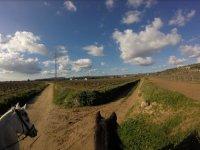Vistas de los alrededores desde los caballos