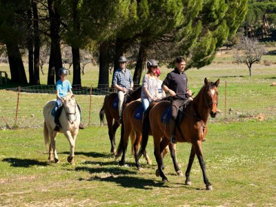 Starting Horse Riding Route Grazalema, 1 hour