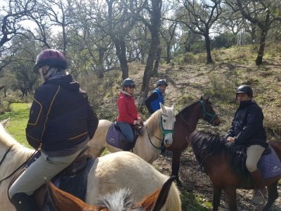 1/2 Day Horse Trip in Cádiz