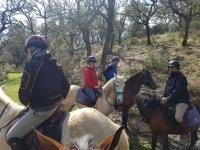 Excursión a caballo en Cádiz por medio día