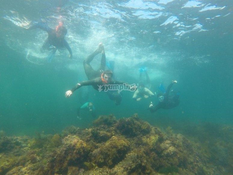 Durante l'attività di snorkeling