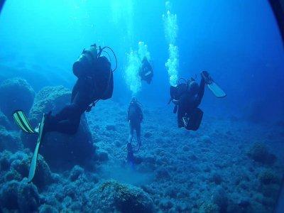 在Lugo潜水5次,10小时