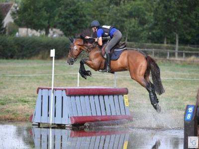 Curso intensivo de equitación Cánoves 1 mes