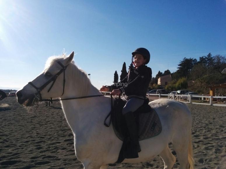 我的白马多么英俊