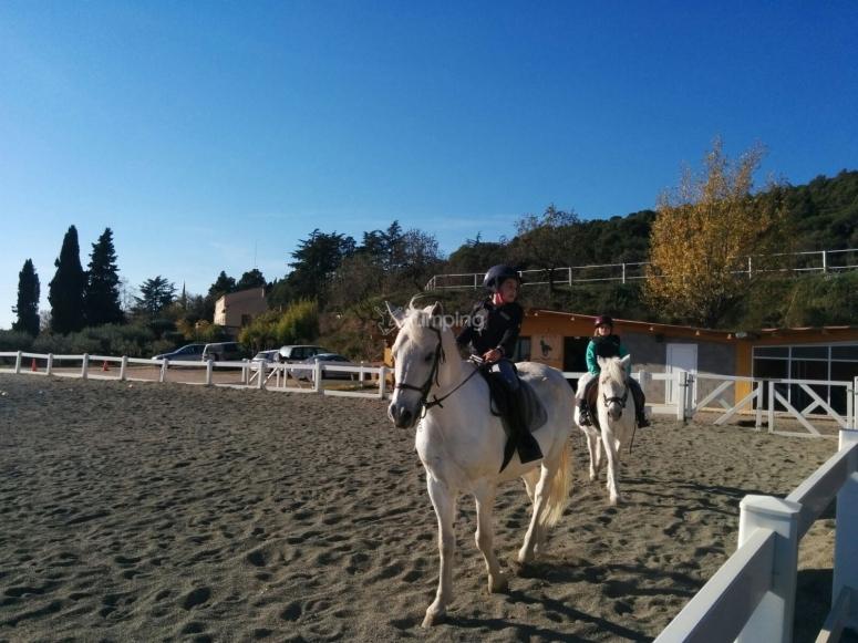 让我们骑马