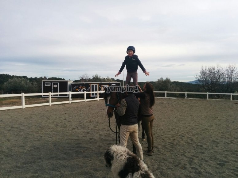 Balance on the horse