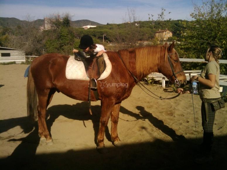 巴塞罗那骑马