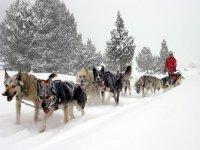 Winter in Naturlandia