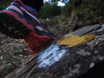 Running Huesca´s Pyrenees