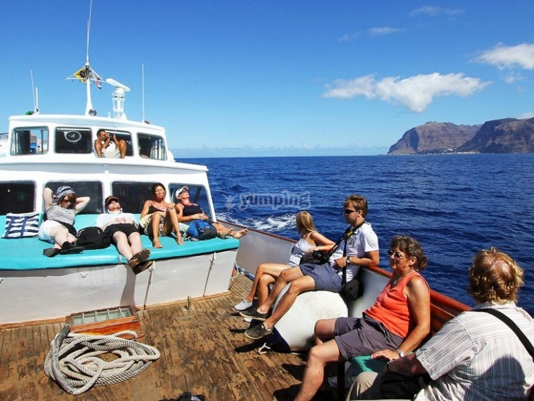 Avistamiento de animales marinos