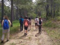 徒步穿越森林