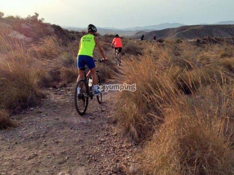 Percorso in bici in estate