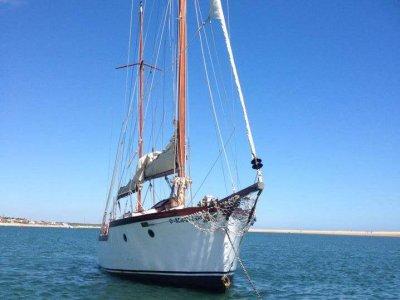 Gita in barca a vela attraverso Huelva e Las Marismas 8 ore
