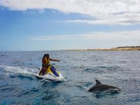 Dolphin next to the jet ski
