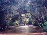 excursión al río