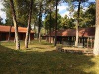 el mejor campamento