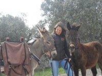 Between two donkeys