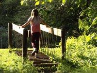 Children's bridges in full nature