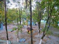 Park of trees in Gerena