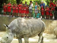 Excursión al zoo.JPG