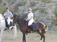 Sobre los caballos en la playa