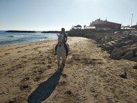 Horseback riding along the Valencian coast