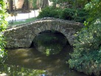 puente del parque