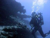 Increíbles fondos marinos