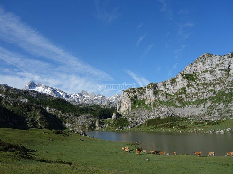 Etapa 2: Lago Ercina