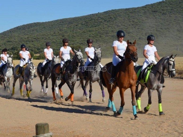 Grupo de alumnos a caballo