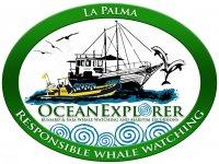 Ocean Explorer Avistamiento de Cetáceos